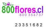 Ir a floreria 800flores.cl
