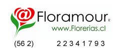 Ir a floreriafloramour.cl
