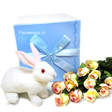 Caja derosas con conejo de peluche